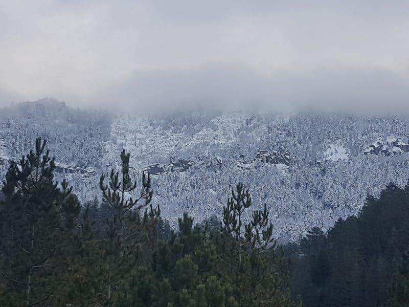 Der erste Schnee des Jahres im Bredhi i Drenovës Nationalpark am 12. Dezember 2019 - Foto: Iljon Thanas
