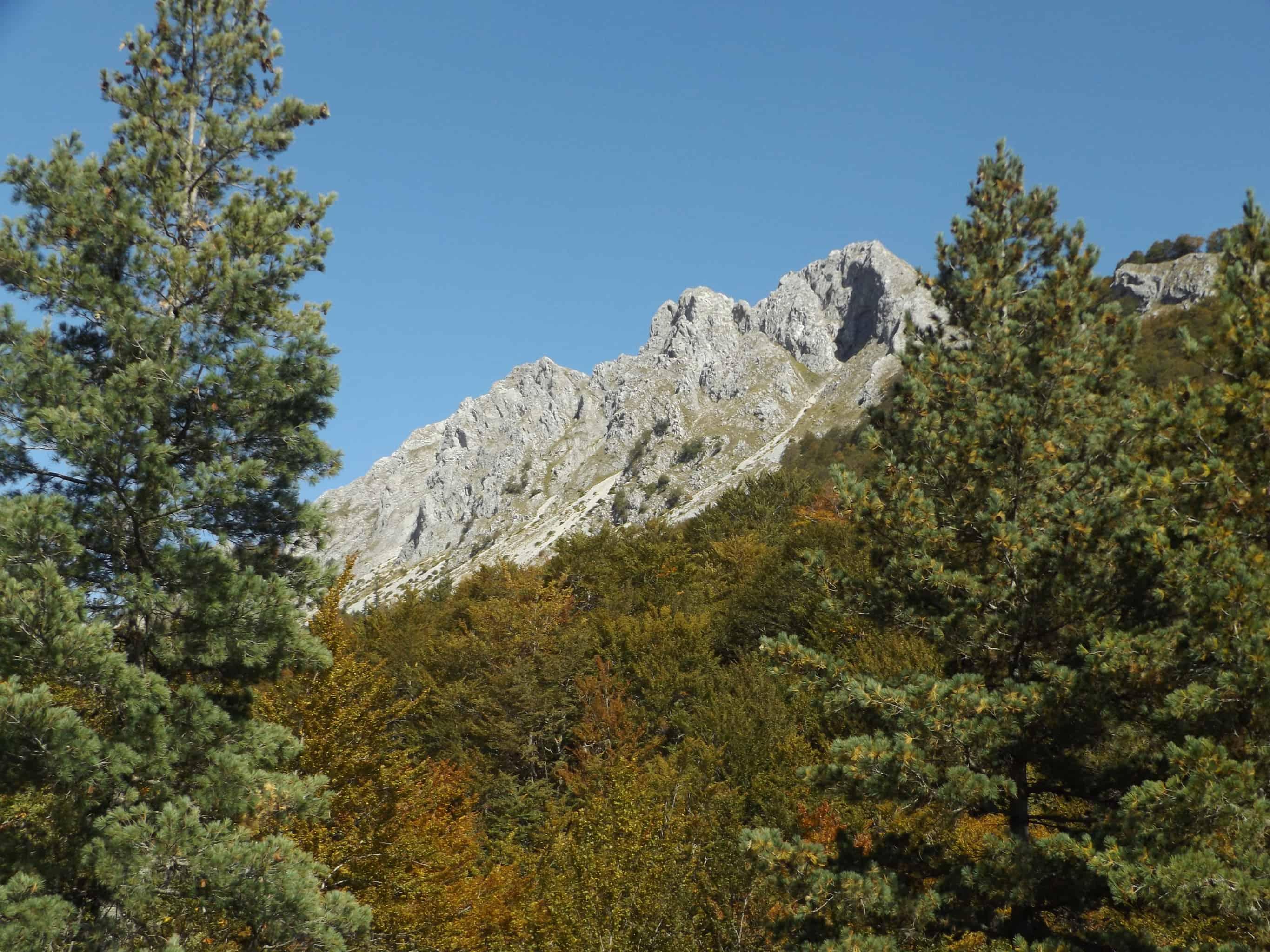 UNESCO-Weltnaturerbe Buchenwälder | Foto: Shebenik-Jabllanicë Nationalpark